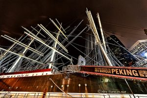 South Street Seaport Museum Book Talk: The Seafaring Cats of Gotham A Talk with Author Peggy Gavan @ Melville Gallery, South Street Seaport Museum | Perth Amboy | New Jersey | United States