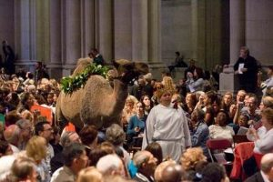 30th Annual Feast Of St. Francis Of Assisi @ New York | New York | United States