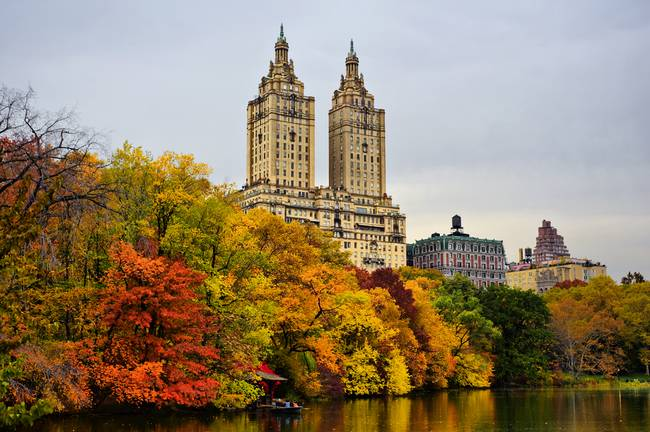Colors of Autumn in New York City.