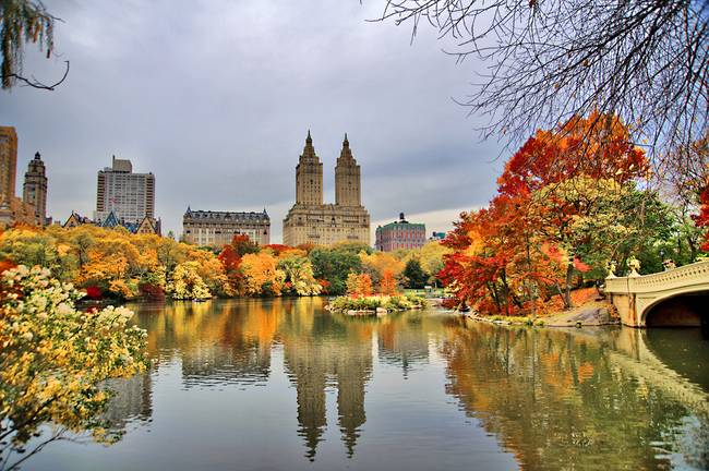 Reflections of Autumn within NYC's Central Park.