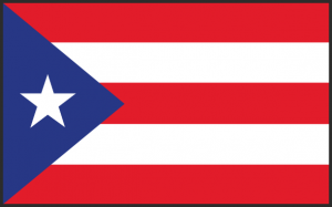 National Puerto Rican Day Parade 2015